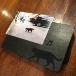 【横浜赤レンガ倉庫 ねこ写真展  ~今を生きる猫たちのキロク・キオク~】