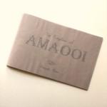 【zine】アマオオイ王国への旅