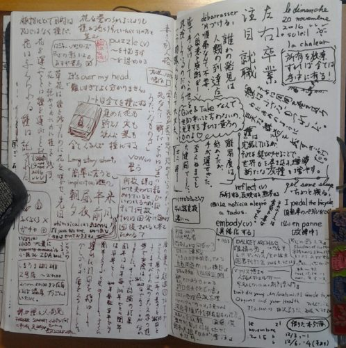 seed-in-the-notebook
