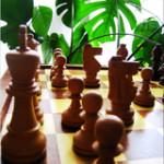 I got a ChessSet !