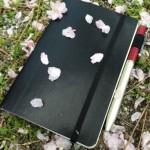 いにしへの奈良の都の ノートブックをめぐる冒険#3